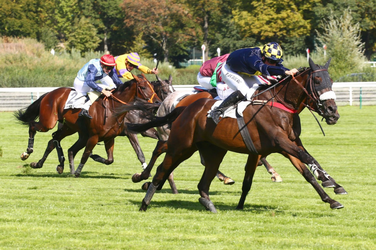 PRIX WEATHER PERMITTING (STEEPLE-CHASE) - FASTORSLOW (Popova)