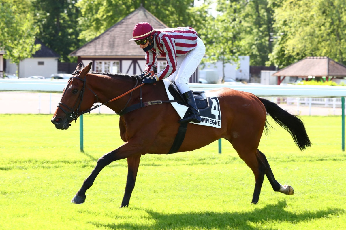 LOU BUCK'S GAGNE SON TICKET POUR LE GRAND STEEPLE